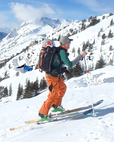 Back Country Skis